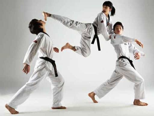 Taekwondo và Karate