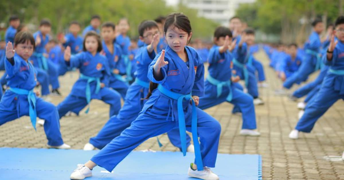 hình ảnh các bé đang học võ Vovinam