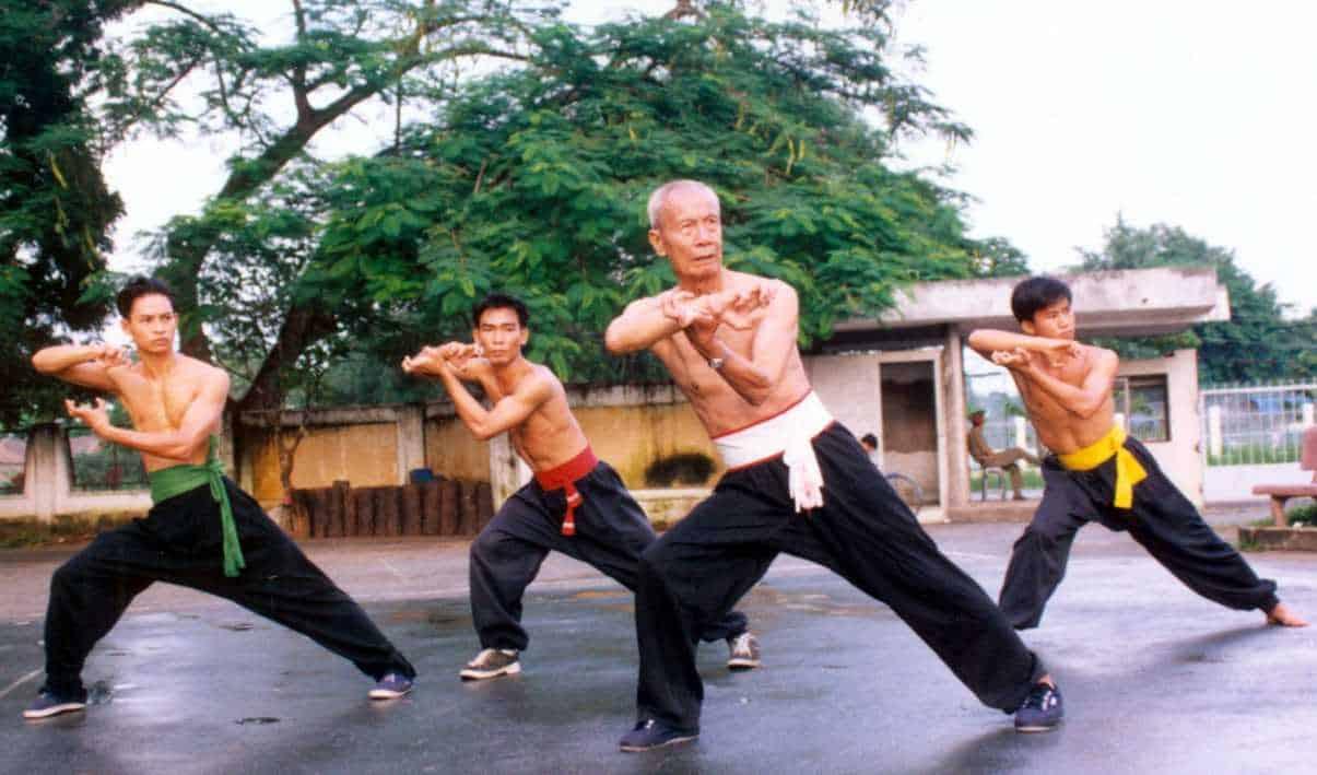 viet nam kungfu